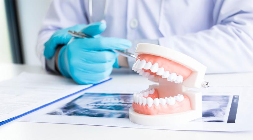 dentist explaining dental health